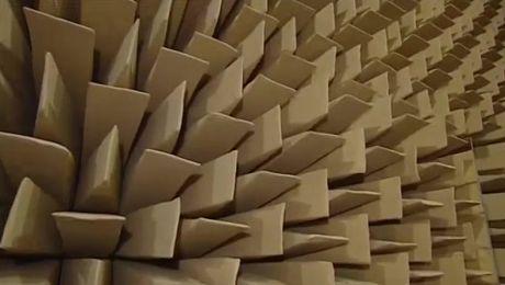 Usłysz dźwięk rozrywanej muffinki. Nauka poprzez zabawę