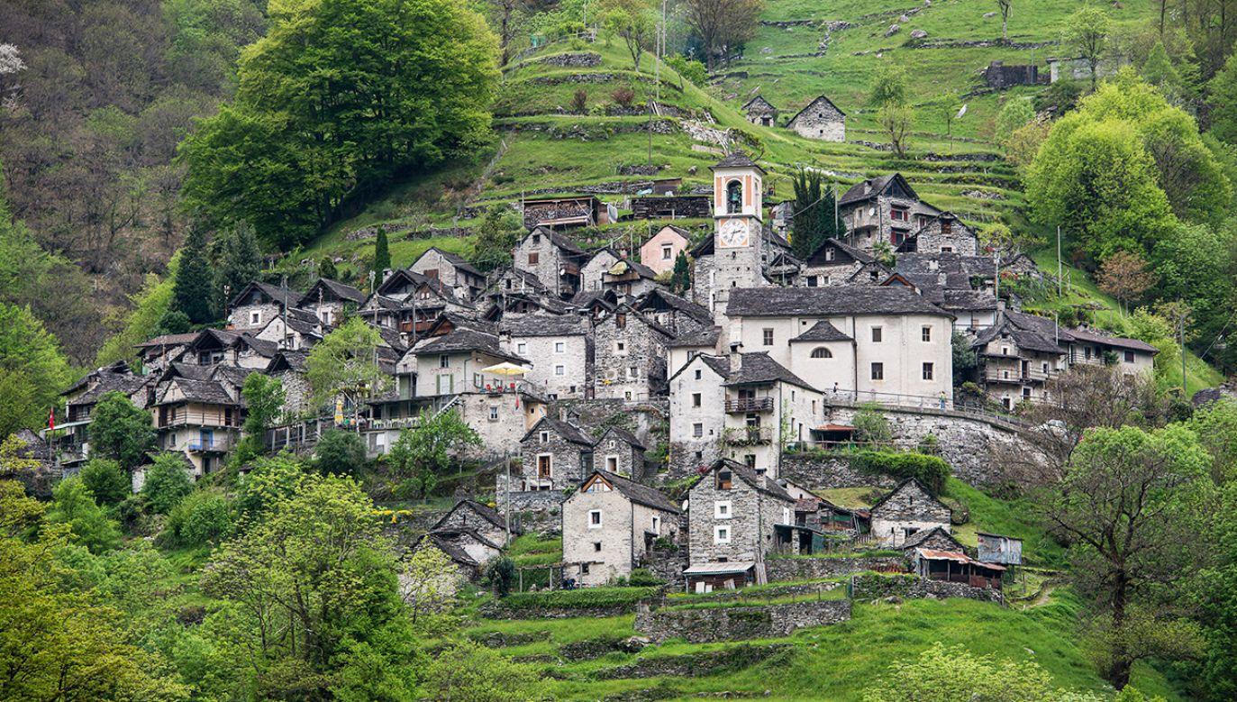 Pierwsze rezerwacje planowane są już na lato przyszłego roku (fot. Shutterstock/Owsigor)