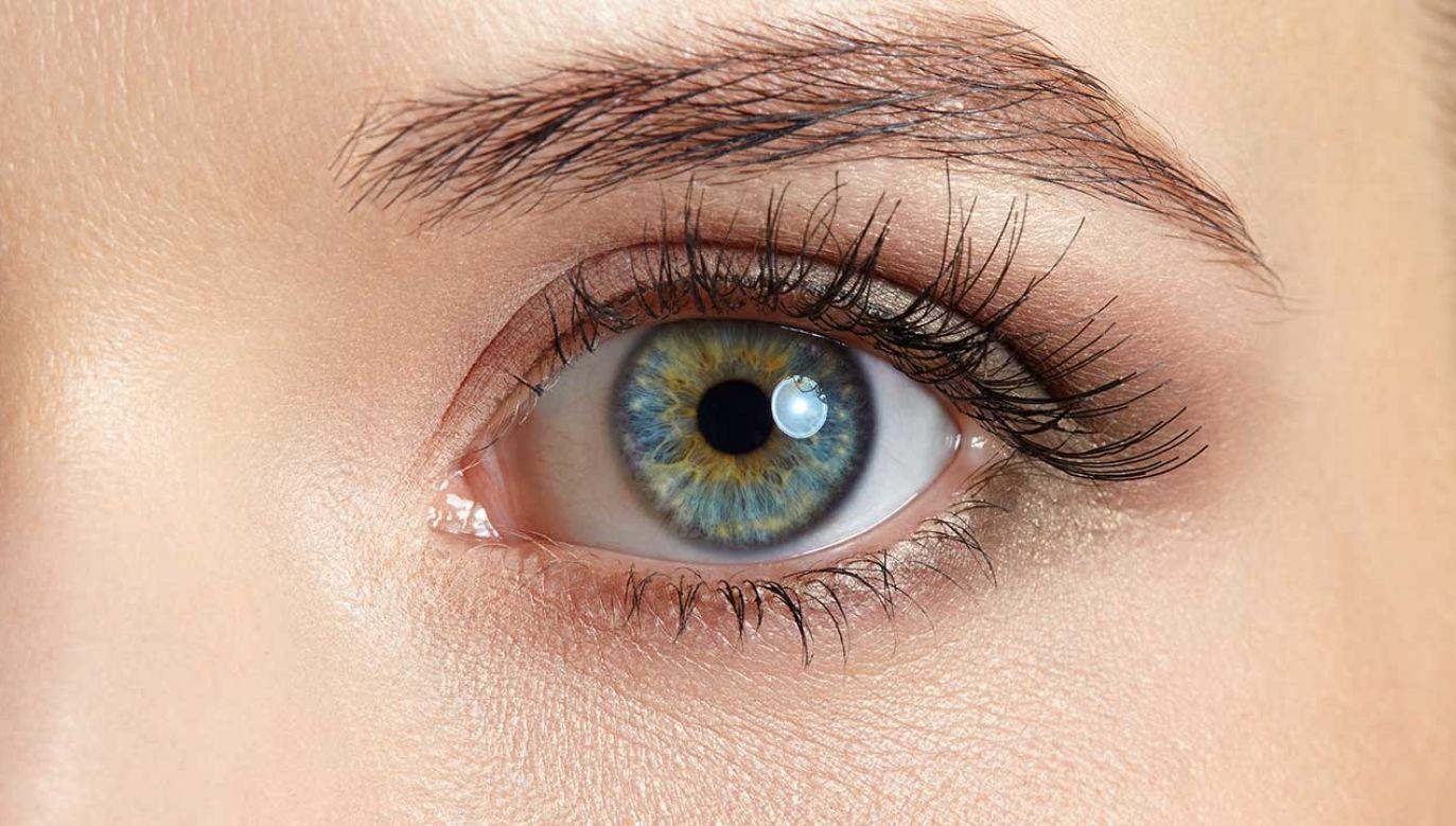 Kontakt wzrokowy ma duży wpływ na komunikację międzyludzką (fot. Shutterstock/nizas)