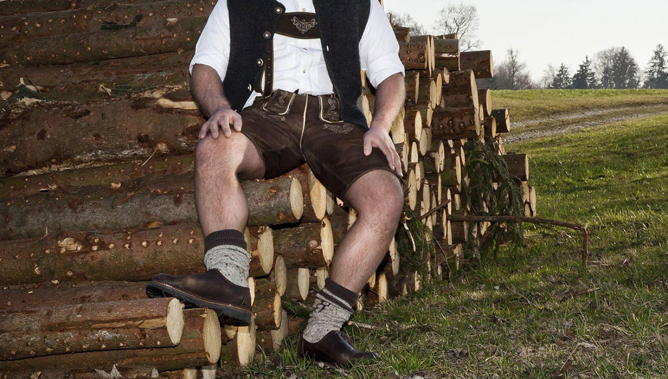 Jak zaznacza ministerstwo leśnictwa, jedynym środkiem zaradczym jest natychmiastowa wycinka zaatakowanych drzew i wywożenie ich z lasu (fot. Shutterstock/Markus Gann)
