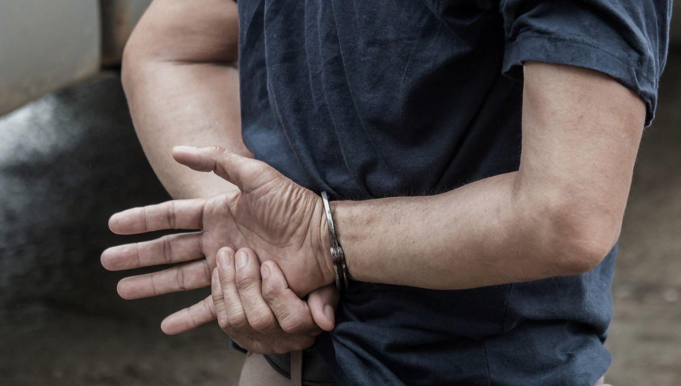 Cała trójka przyznała się do popełnionego przestępstwa (fot. Shutterstock/wanida tubtawee)