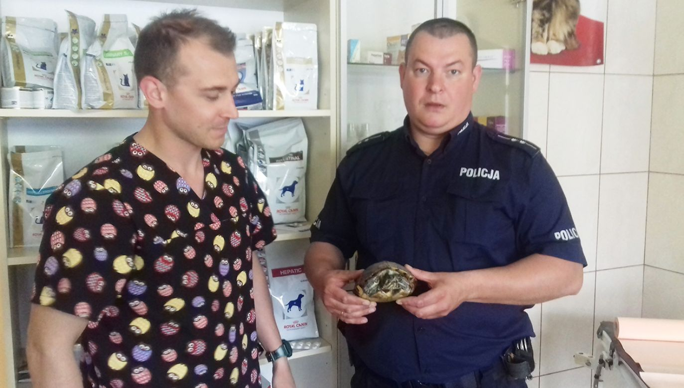 Dzielnicowy przekazał żółwia lekarzowi weterynarii (fot. policja.pl)