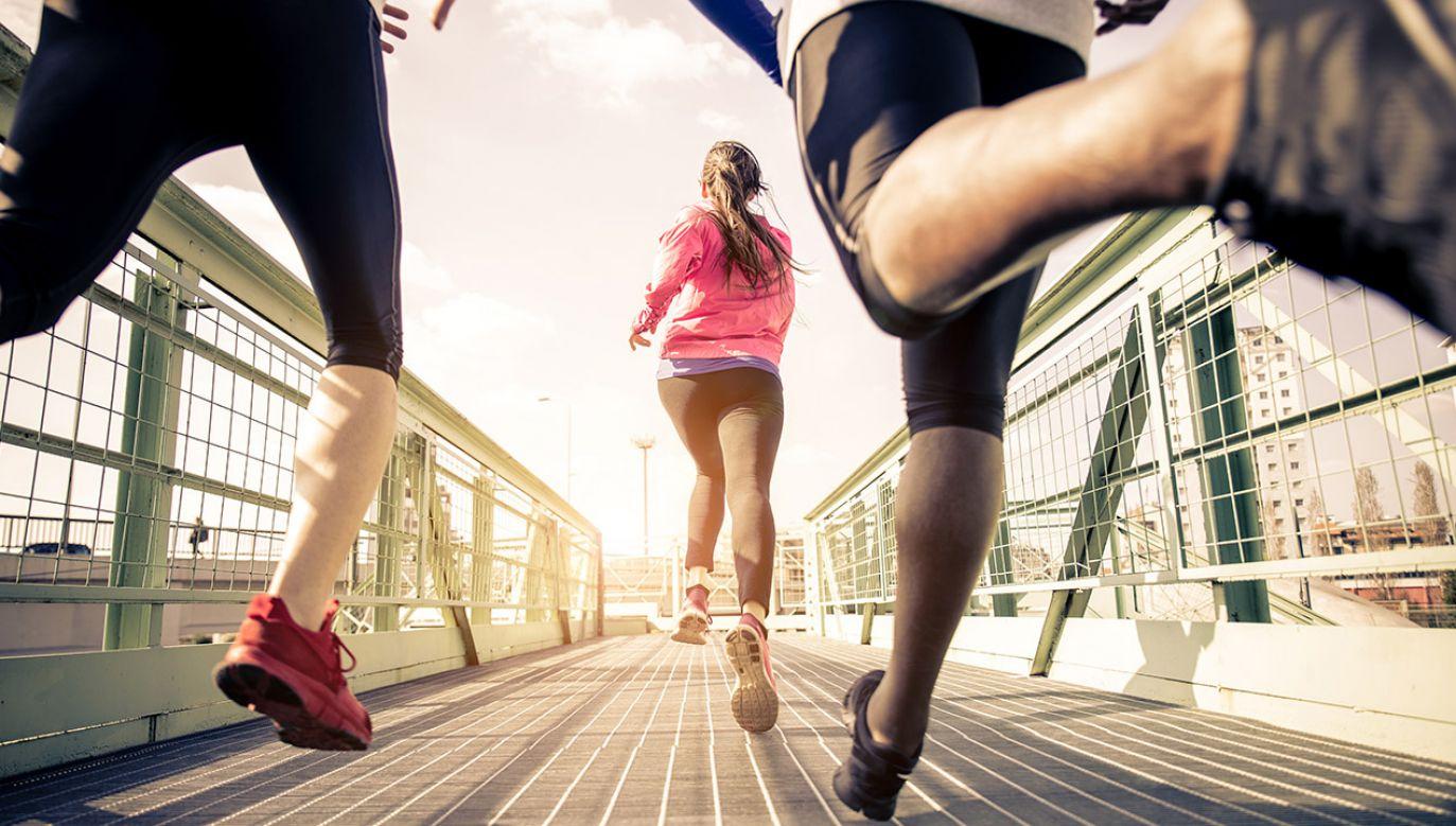 Naukowcy z Uniwersytetu w Lipsku porównywali wpływ trzech rodzajów treningów (fot. Shutterstock/oneinchpunch)