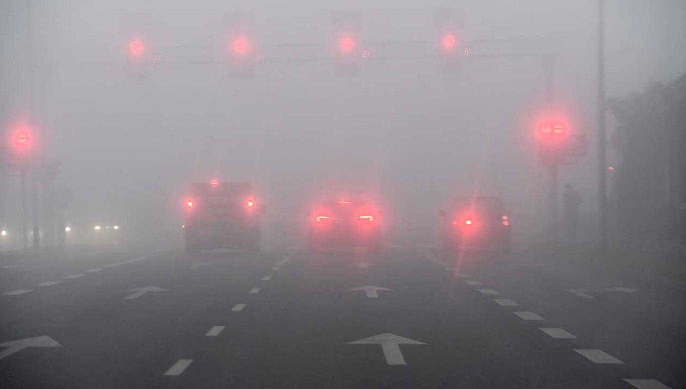 IMGW w Gdyni ostrzega przed mgłą na Bałtyku (fot. PAP/Marcin Bielecki)