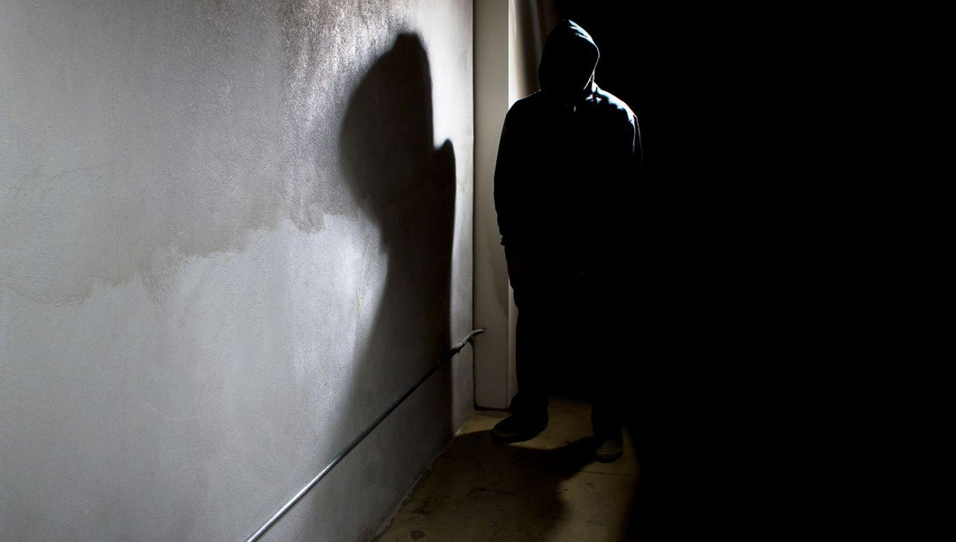 Mężczyzna, który zastrzelił w Mrągowie 50-letnią kobietę, był jej stalkerem (fot. Shutterstock/Rommel Canlas)