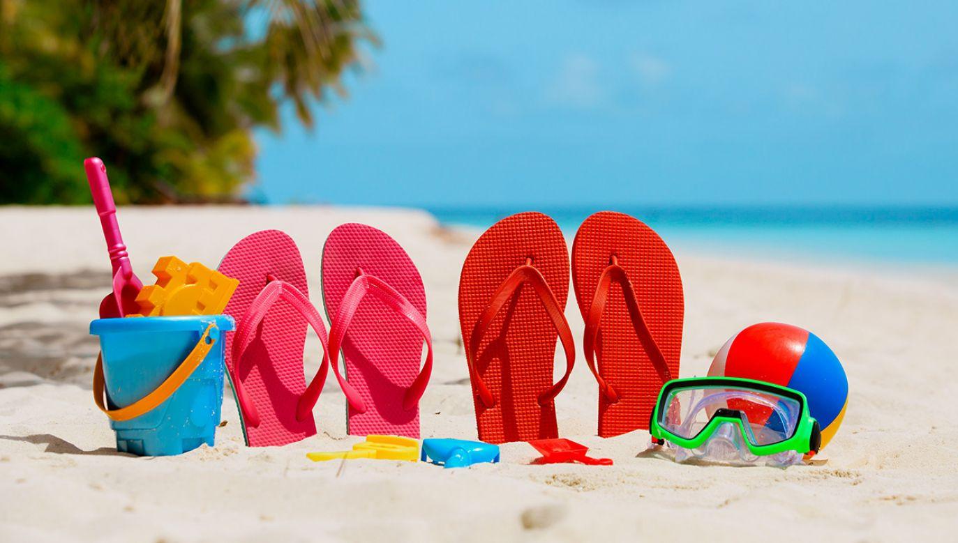 Polacy coraz częściej wyjeżdżają na zagraniczne wakacje (fot. Shutterstock/NadyaEugene)
