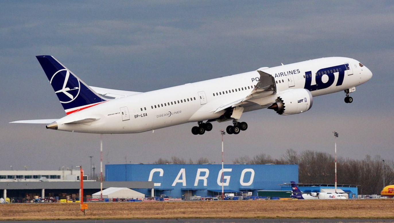 Nowe lotnisko ma powstać między Łodzią a Warszawą (fot. Pixabay/pkozmin)