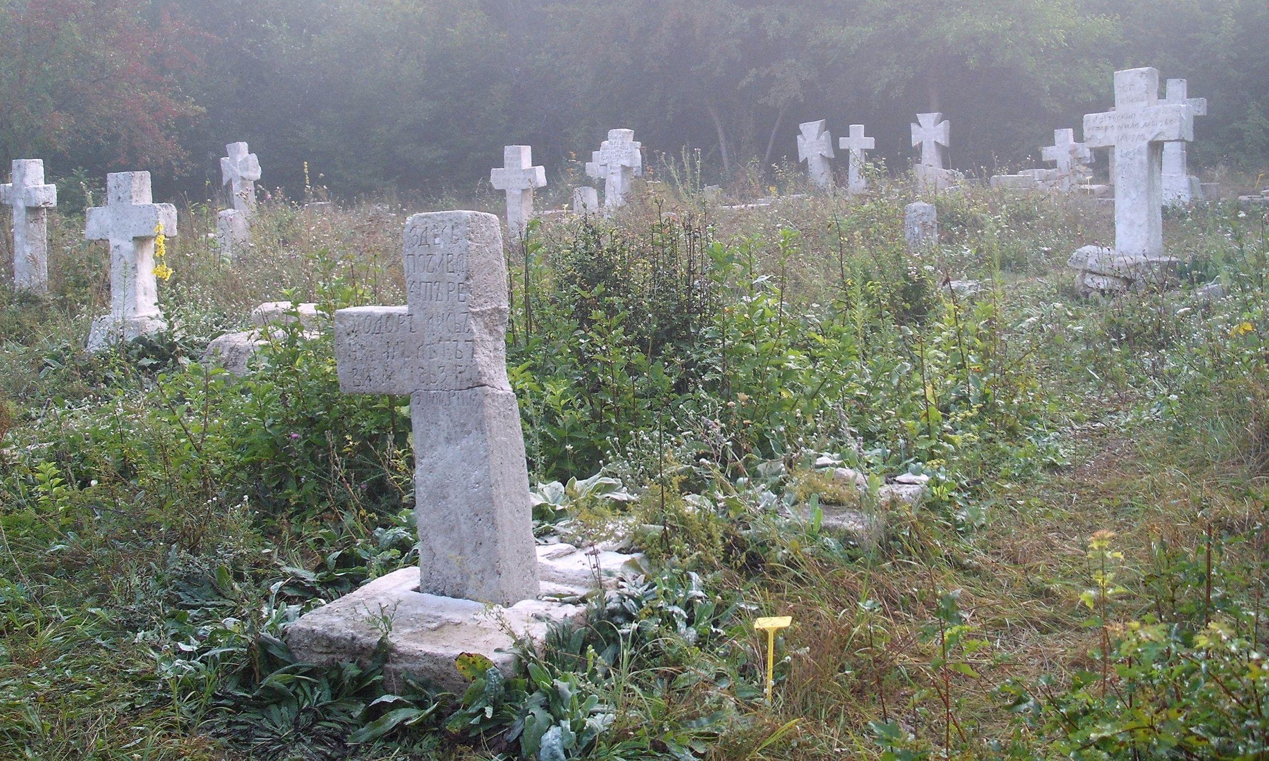 Najstarszy z cmentarzy prawosławnych w Prytulivce, remontowany w 2012 roku przez Stowarzyszenie Magurycz. Fot. Wikimedia/Birczanin – praca własna, CC BY-SA 3.0