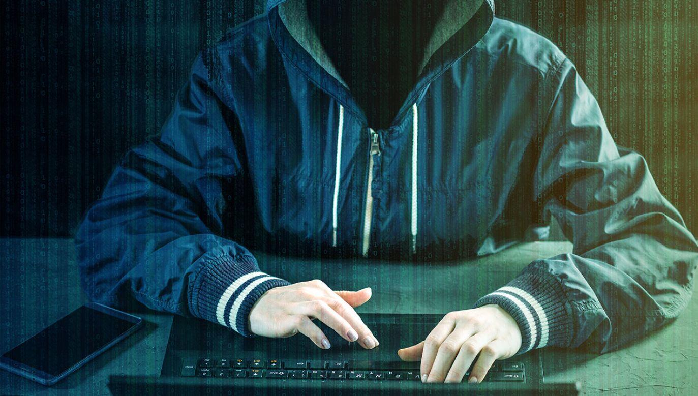 sytuacja bezpieczeństwa narodowego w coraz większym stopniu jest definiowana cybernetycznym bezpieczeństwem kraju (fot. Shutterstock/Artem Oleshko)