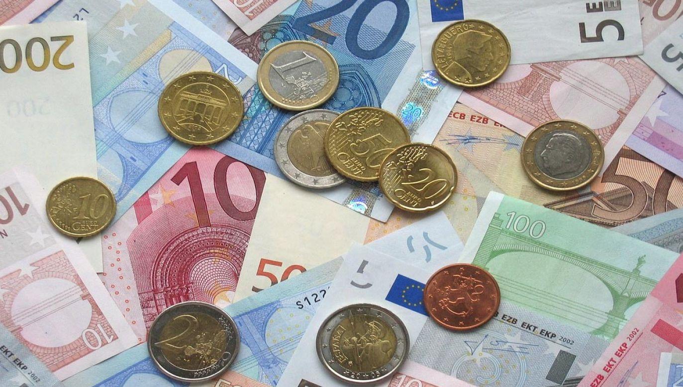 Kosiniak-Kamysz: jasno powiedzieliśmy, że Polska nie jest gotowa na przyjęcie euro (fot. pixabay/janeb13)