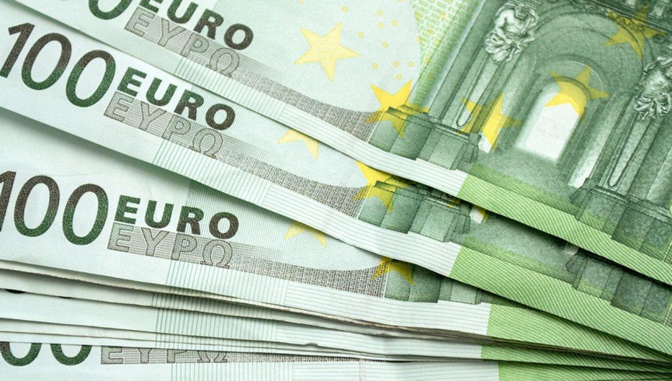 Grupa podrabiała m.in. banknoty o wartości 100 euro (fot. Pixabay)