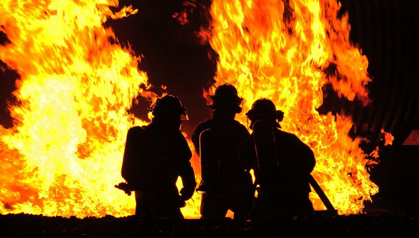 Okoliczności pożaru ustalają policjanci. Zdjęcie ilustracyjne (fot. skeeze/Pixabay)