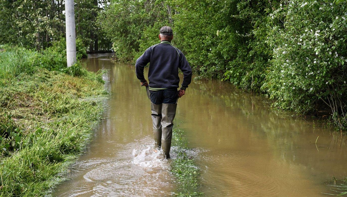 Opady przelotnego deszczu występować będą jedynie miejscami w sobotę (fot. PAP/Darek Delmanowicz)