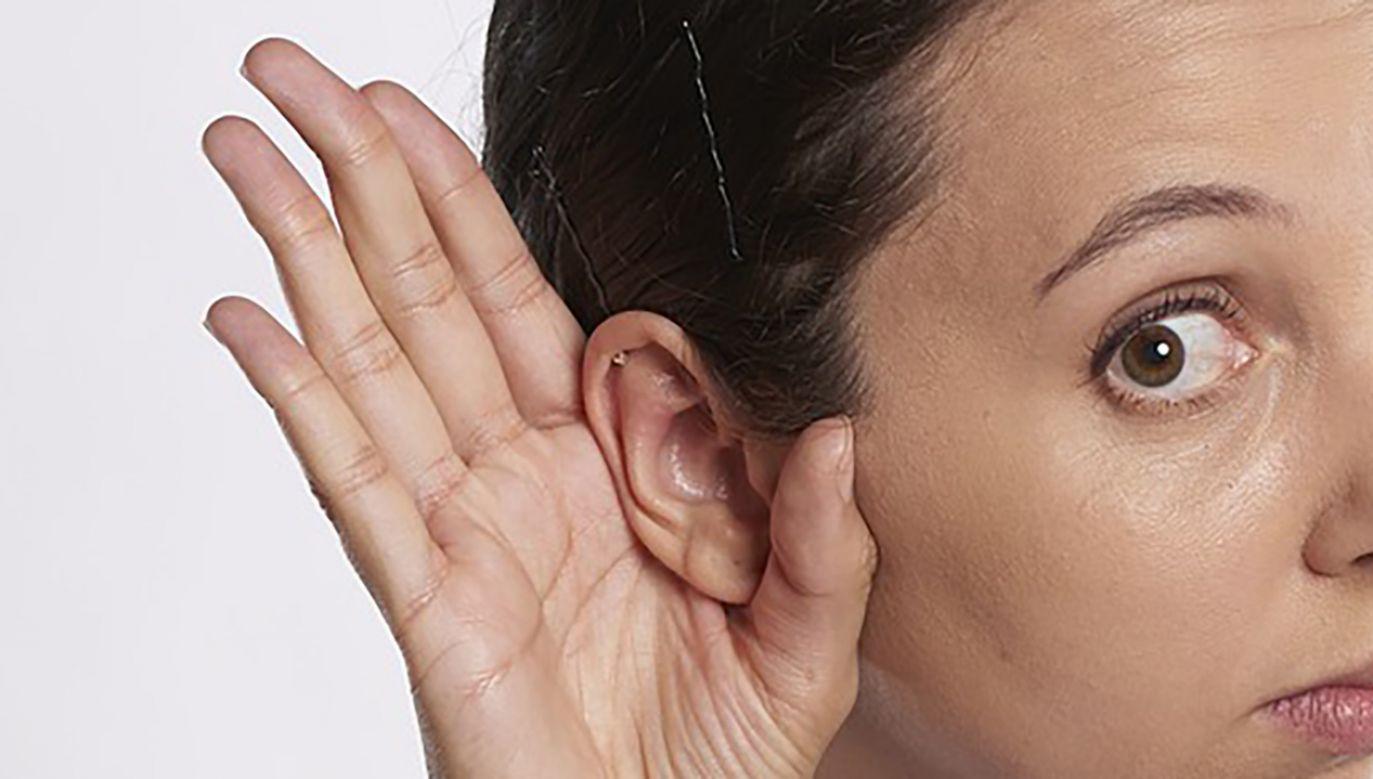 Słuch absolutny może być silniej kontrolowany przez geny, niż dotychczas sądzono (fot. Pixabay/RobinHiggins)