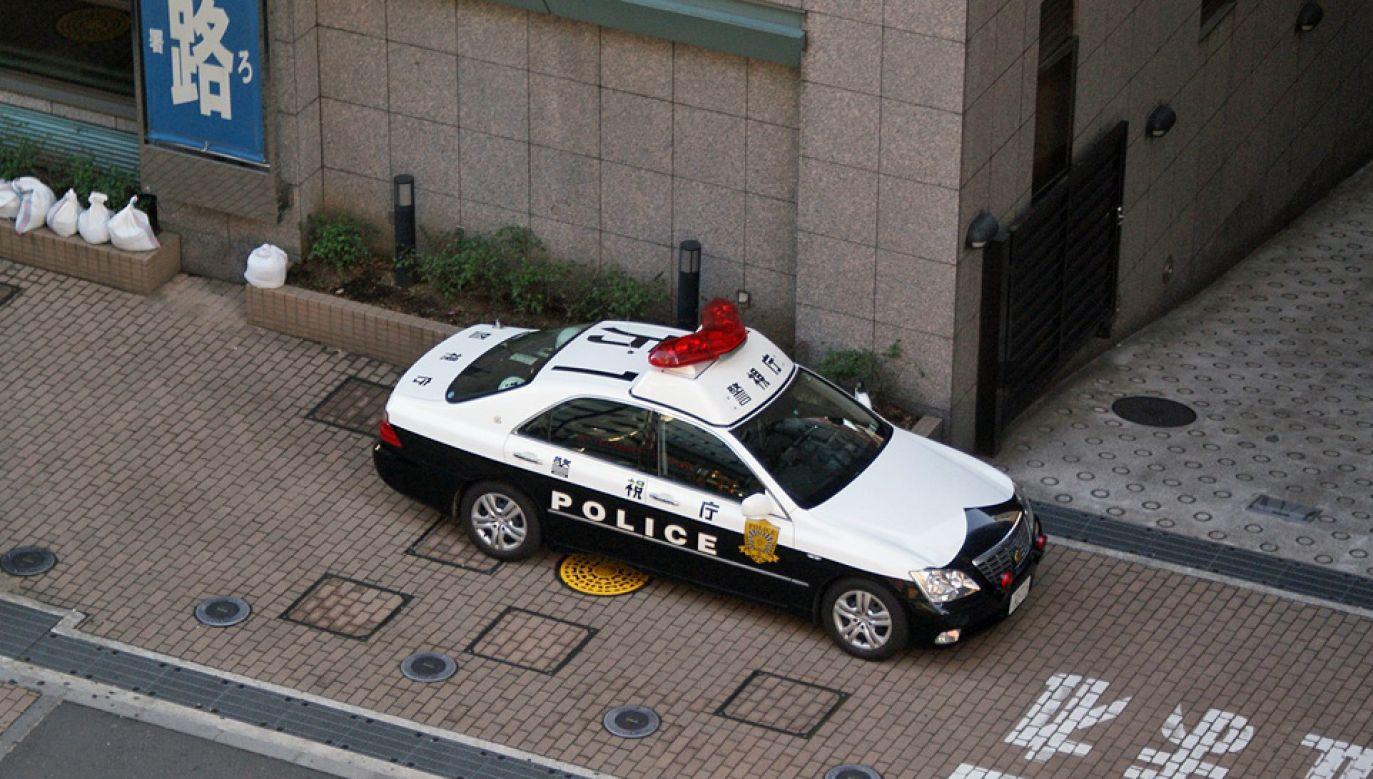 Policjanci znaleźli napastnika w parku znajdującym się nieopodal sądu (fot. Wiki/Luca Mascaro)
