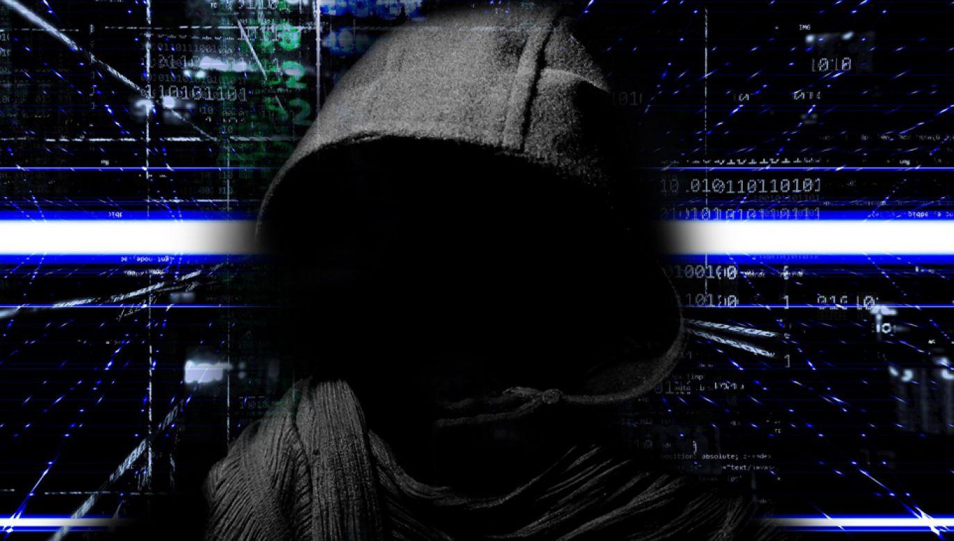 Haker Wykradzione tajne informacje Gamble zamieszczał na Twitterze i Wikileaks (fot. pioxabay/TheDigitalArtist)