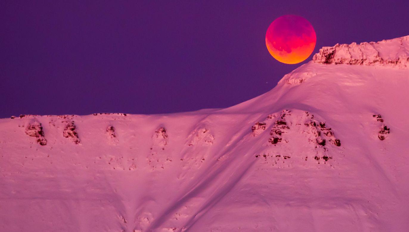 Norwegia (fot. PAP/EPA/HEIKO JUNGE)