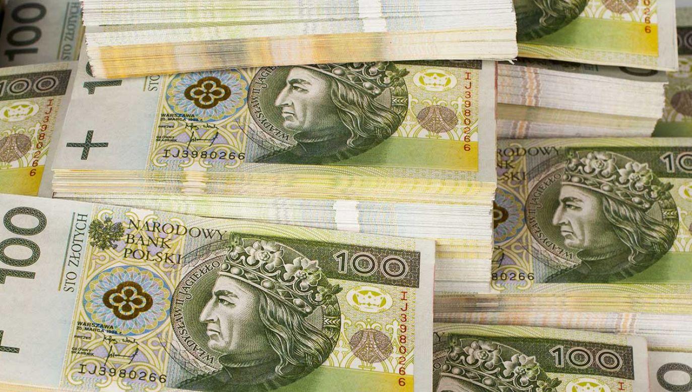 Wzrost transferów socjalnych oraz obniżki podatków wzmocnią konsumpcję prywatną (fot.Shutterstock)