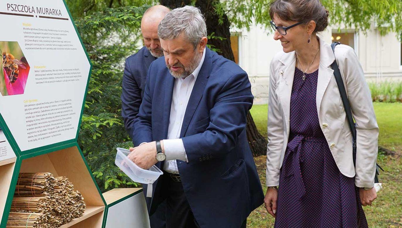Minister Jan Krzysztof Ardanowski otworzył hotel dla dziko żyjących pszczół murarek ogrodowych (fot. Ministerstwo Rolnictwa i Rozwoju Wsi)