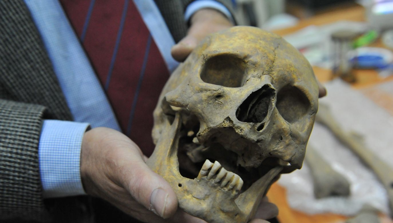 The skull of the alleged vampire has now proved to have belonged to a suspected victim of a witchcraft panic. Photo: PAP/Marcin Bielecki