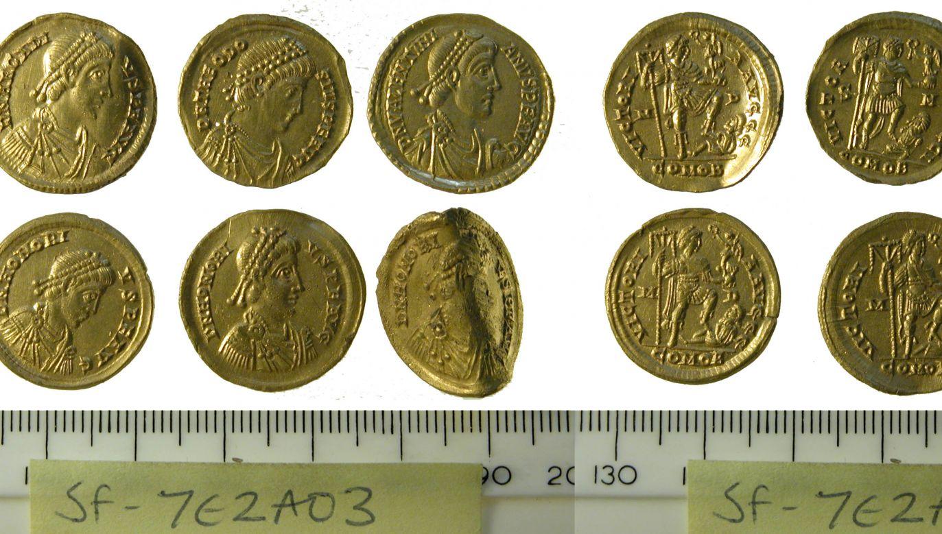 Rzymskie monety z IV w. uznano za prawdziwy skarb (fot. Faye Minter, Suffolk County Council Archaeology Service)