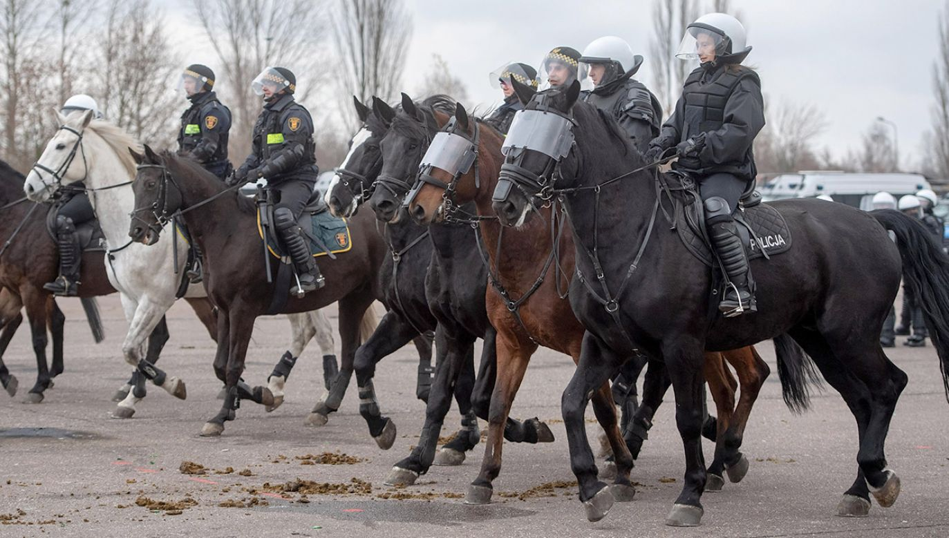Zaginionego studenta poszukują policjanci na koniach (fot. arch.PAP/Grzegorz Michałowski)
