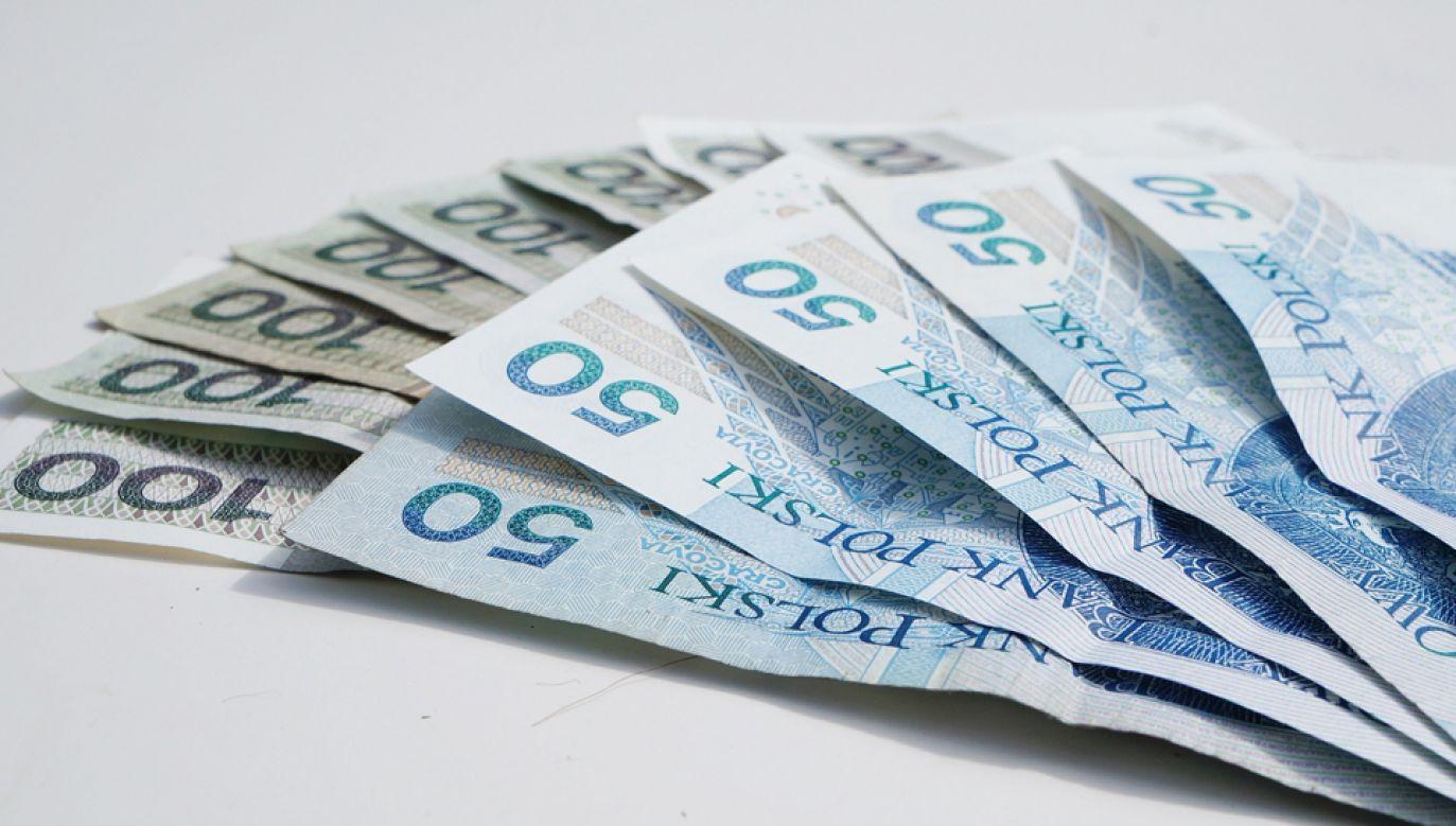 FRD gromadzi środki na wypłatę emerytur na wypadek gdy na skutek zmian demograficznych  (fot. pixabay)