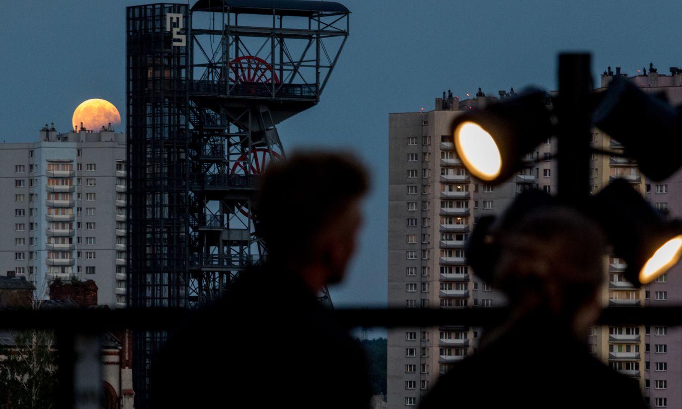 (fot. PAP/Andrzej Grygiel)