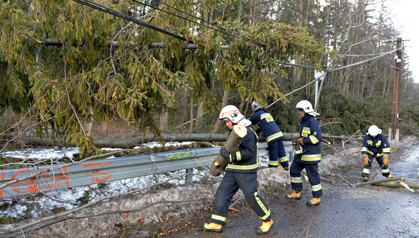 Po wtorkowych wichurach ponad 4 tysiące odbiorców pozbawionych jest prądu (fot. arch. PAP/Grzegorz Momot)