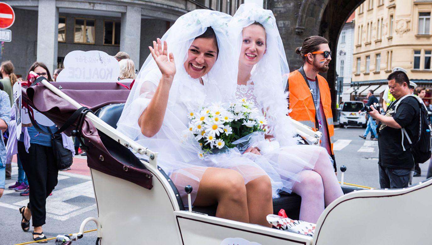 Parada środowisk LGBT w Pradze (fot. arch. PAP/Ruzicka David)