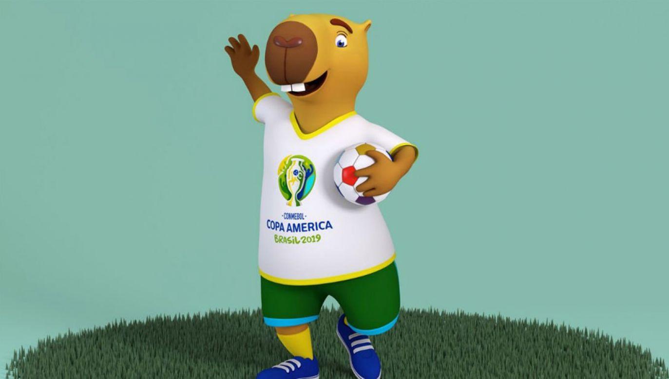 Kapibara Zizito będzie maskotką Copa America 2019 (fot. mat.pras.)