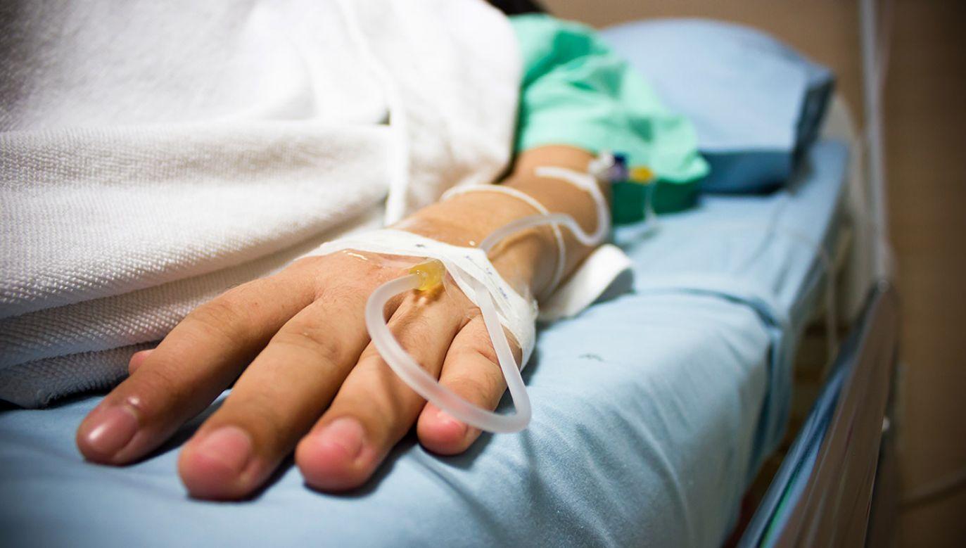 Przyczyna śmierci wywołała panikę (fot. Shutterstock/Sanchai Khudpin)