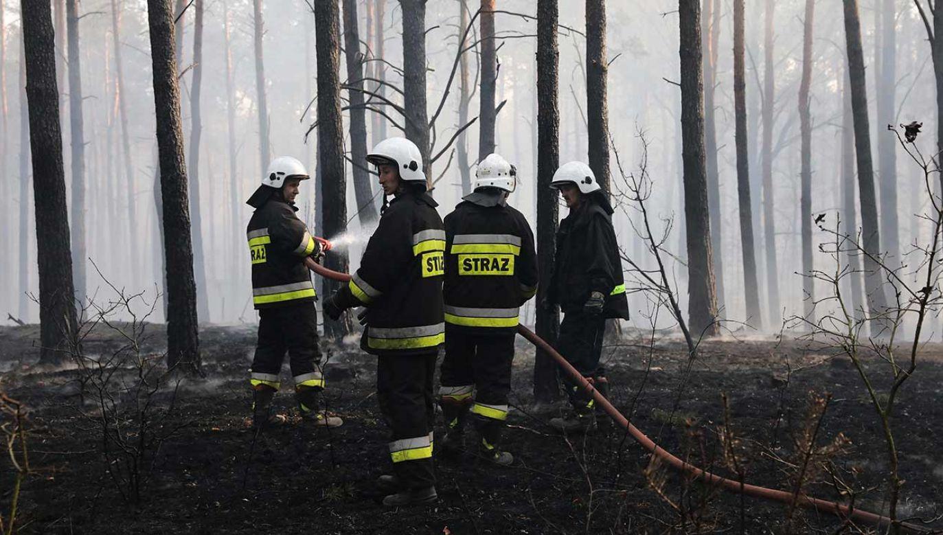 Informacje o pożarach otrzymaliśmy od naszych czytelników na numer interwencyjny Twoje Info (fot.  arch. PAP/Tomasz Gzell)