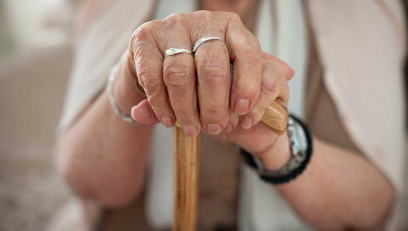 102-latka poddawana jest testom psychiatrycznym, które pozwolą stwierdzić, czy za swój czyn będzie odpowiadać karnie (fot. Shutterstock/Cherries)