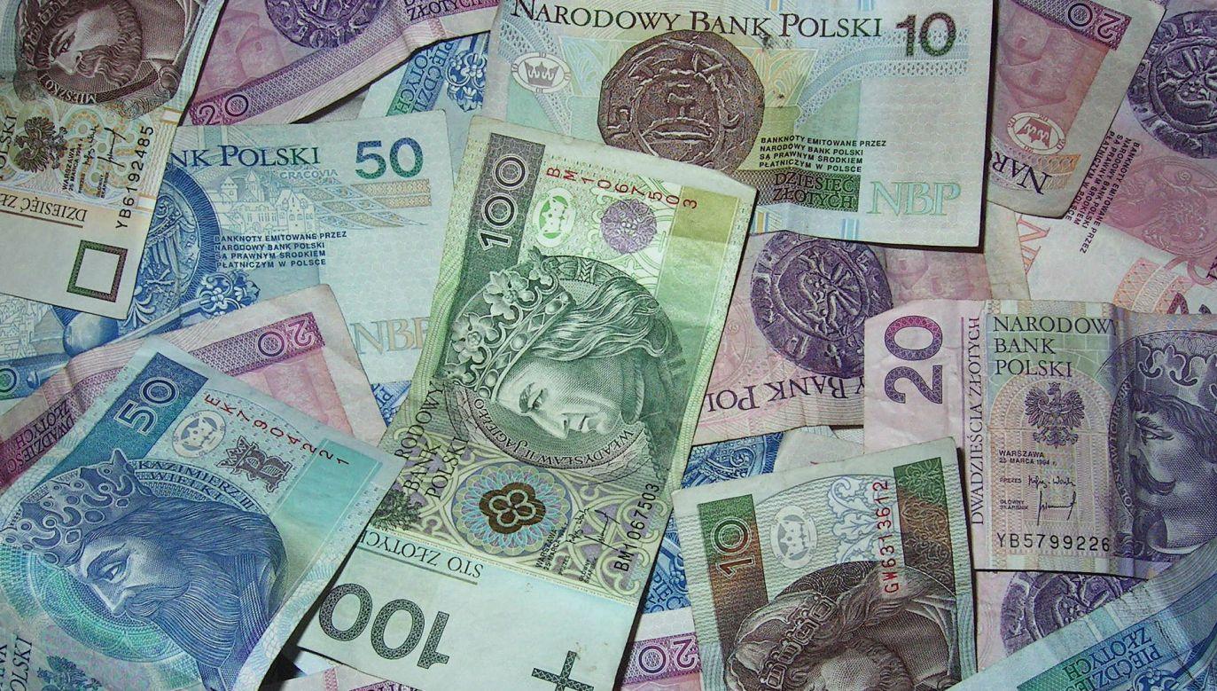 Jak podał NBP, w obiegu najwięcej, bo ponad 1,3 mld sztuk, jest banknotów o nominale 100 zł (fox. Pixabay/Fz)