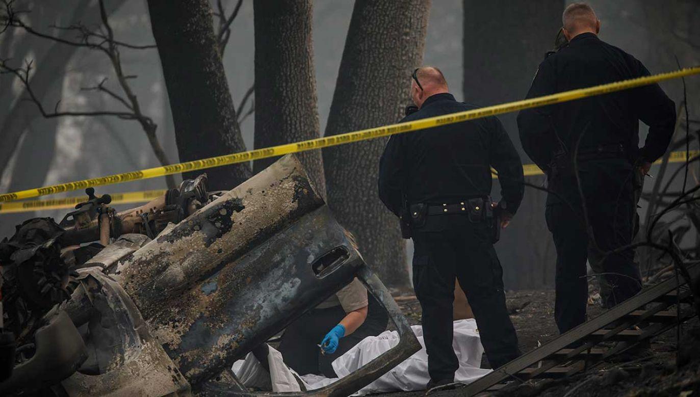 To najbardziej niszczycielski pożar w historii USA od początku stulecia (fot. Marcus Yam /Los Angeles Times via Getty Images)