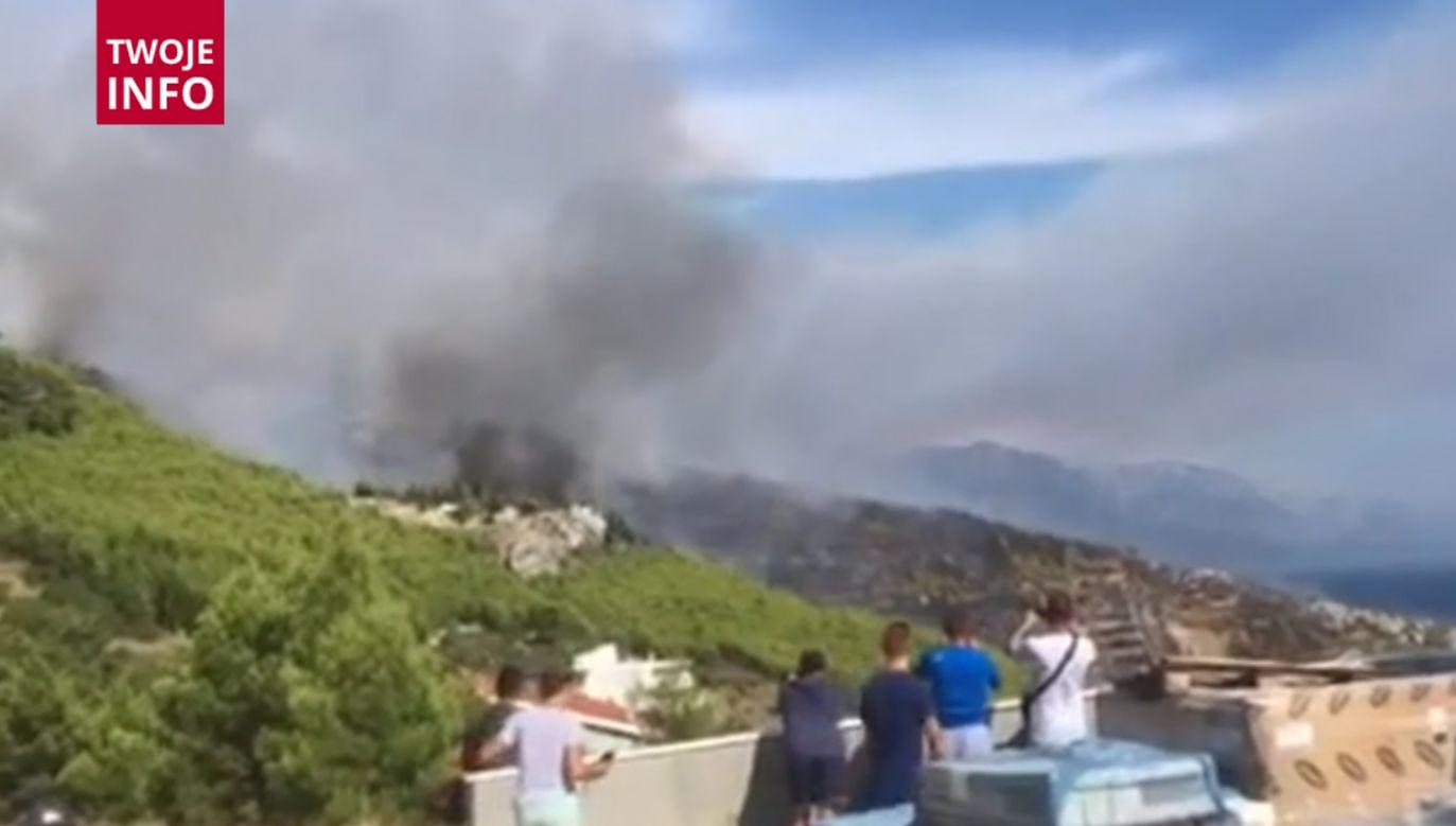 Ogień trawi lasy na wybrzeżu Chorwacji  (fot. Twoje Info)