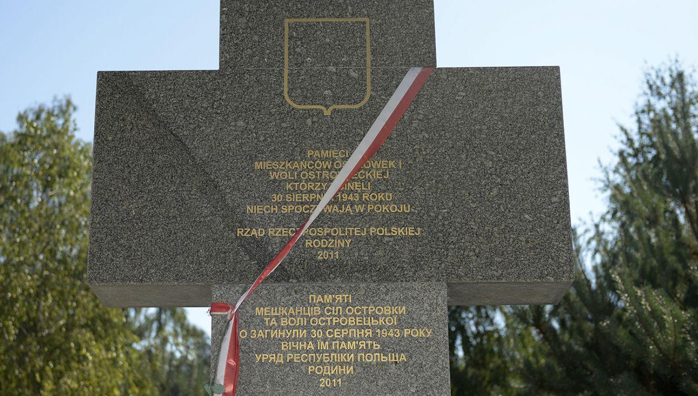 Monument na polskim cmentarzu w obwodzie wołyńskim (fot. arch. PAP/Darek Delmanowicz)