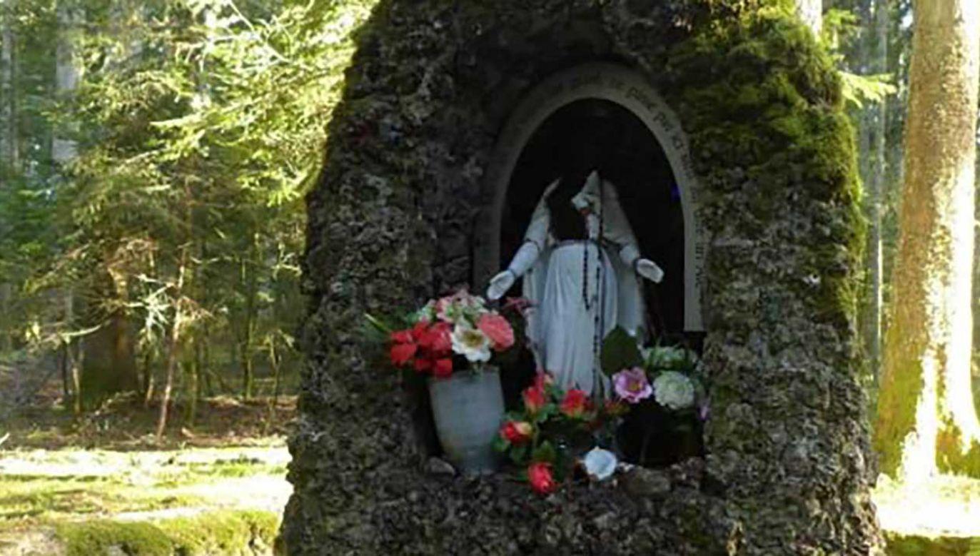 Figurze odcięto głowę (fot. TT/Le Progrès Loire)