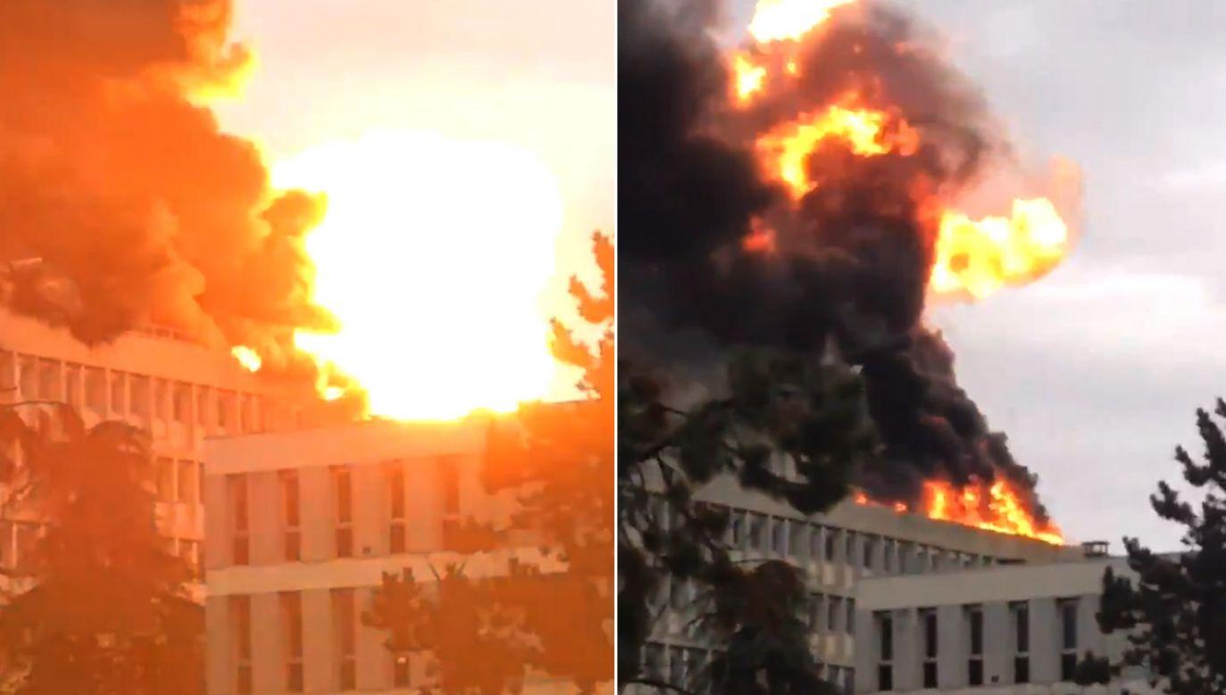 Według mediów do wybuchu doszło w bibliotece uniwersyteckiej (fot. tt/@RT_com)