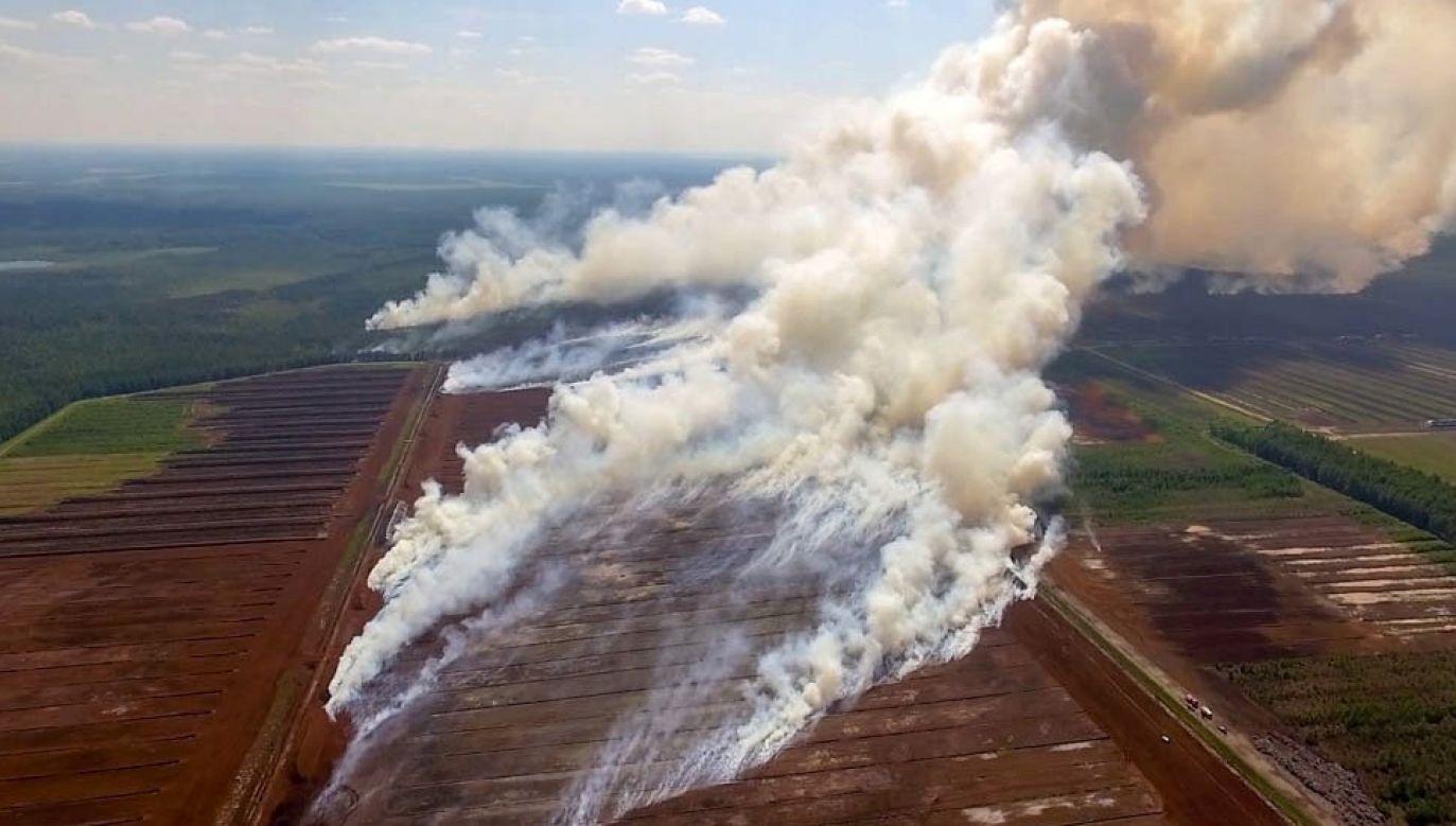 Płonie blisko 400 hektarów torfowisk (fot. VUGD/Twitter)