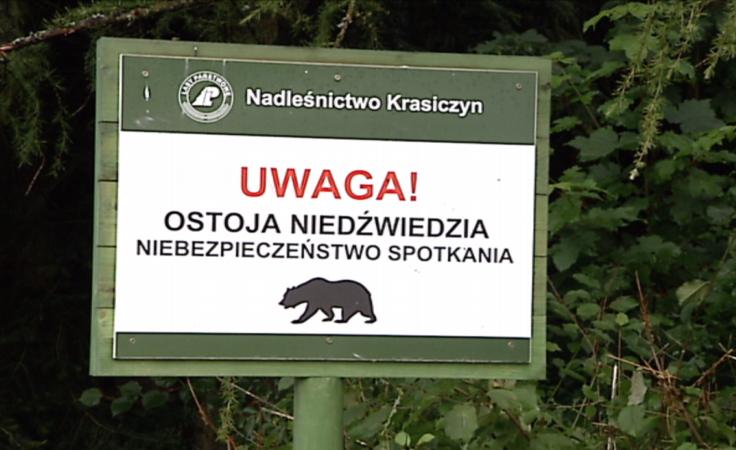Tablice ostrzegające o możliwości spotkania niedźwiedzia
