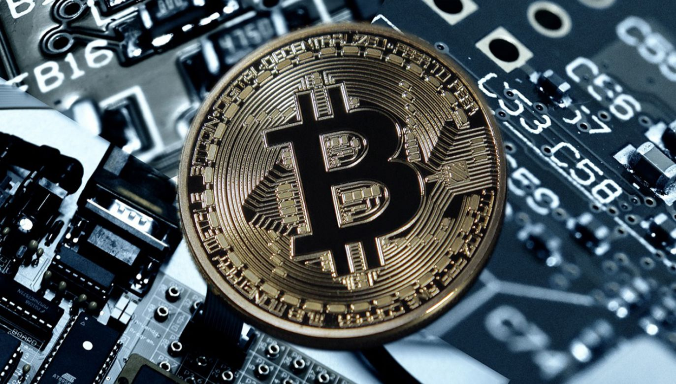 Wydobywano głównie kryptowaluty Bitcoin (BTC) oraz Ethereum Classic (ETC) (fot. Pixabay)