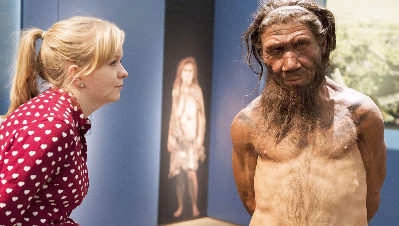Neandertalczycy żyli w niewielkich grupach, wobec tego każda śmierć była znaczącą stratą (fot. Will Oliver/PA Images via Getty Images)