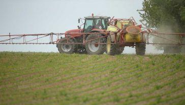 Glifosat jest substancją chemiczną używaną w środkach chwastobójczych (fot. Sean Gallup/Getty Images)