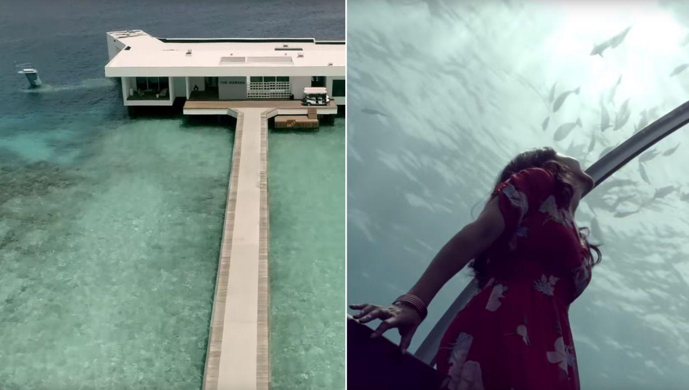 Willa Muraka znajduje się pięć metrów pod powierzchnią wody (fot. YT/Conrad Maldives Rangali Island)