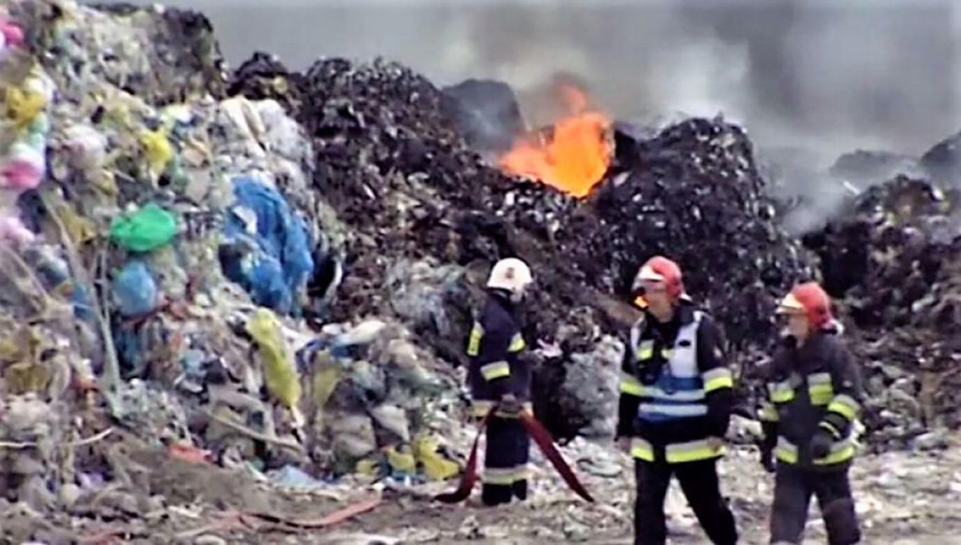 Sprawę pożarów wysypiska śmieci wyjaśniają prokuratura i policja (fot. TVP 3 Poznań)