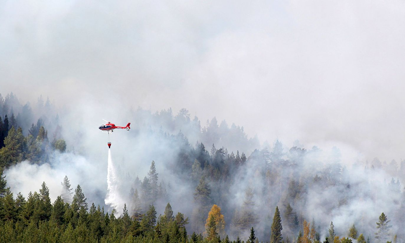 (fot. PAP/EPA/Mats Andersson)