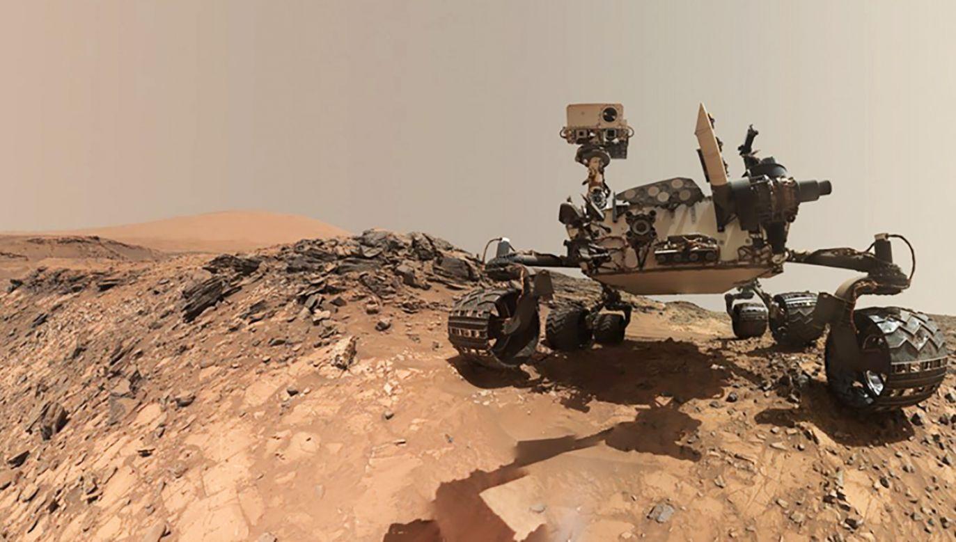 Nowe wyniki badań zostaną ogłoszone w czwartek 7 czerwca (fot. NASA)