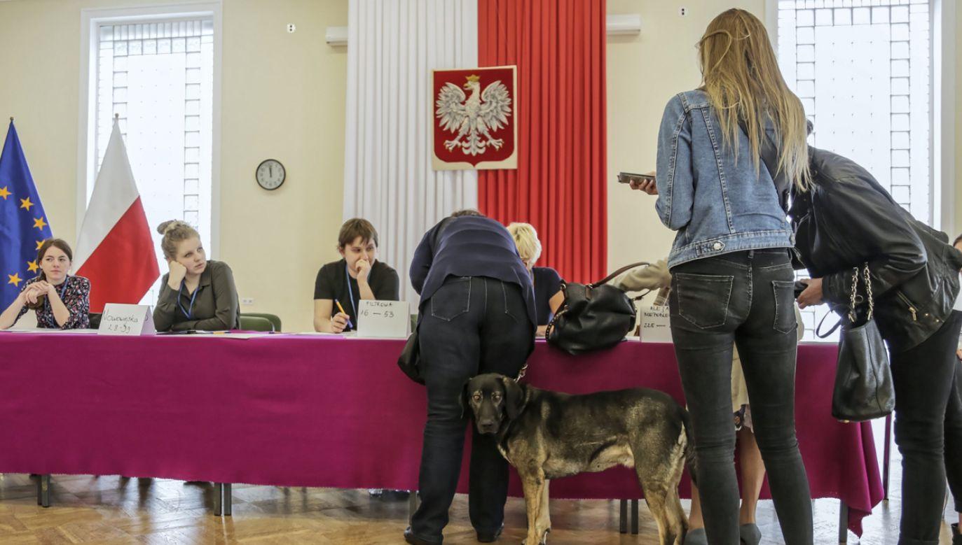 """Zdaniem szefa gabinetu prezydenta """"te wybory pokazały też siłę demokracji w Polsce i siłę wyborców"""" (fot. PAP/Wojciech Olkuśnik)"""